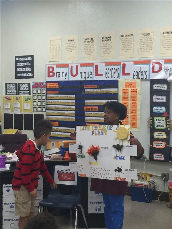 Fourth Graders Showcase the Animal Life Cycle